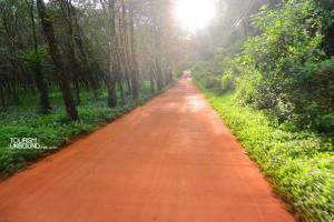 ถนนบนเกาะหมาก บางช่วงยังเป็นดินแดง เรียบและสะอาดตา